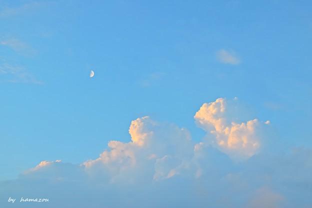 わんちゃん月見