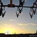 ベランダの朝陽