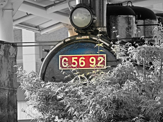 Photos: Red number C5692