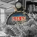 Red number C5692