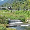 笹子川を行く