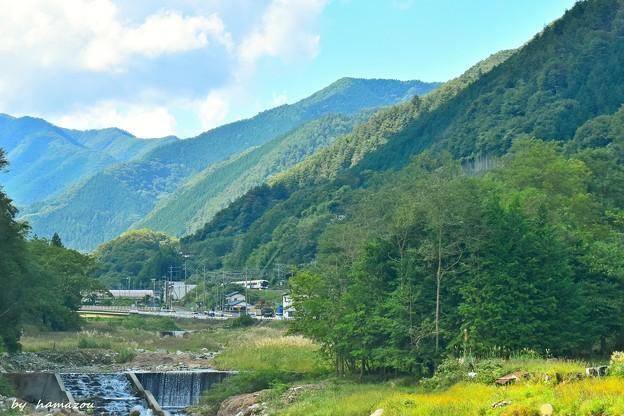 Photos: 秋色沿線(68)