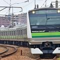 YOKOHAMA LINE