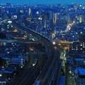 The Blue Night