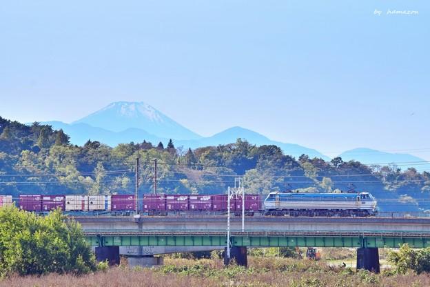 富士見貨物