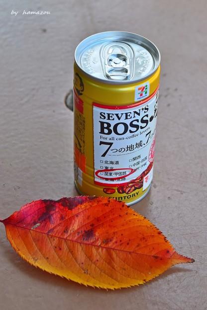 落ち葉とBOSS