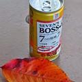 Photos: 落ち葉とBOSS