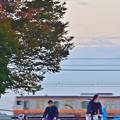 秋色沿線(79)