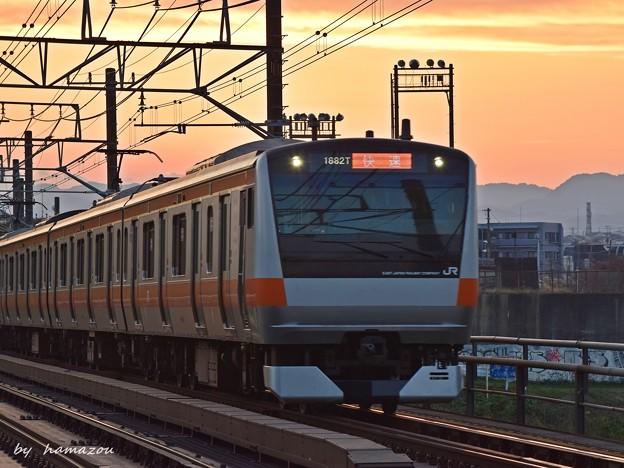 Photos: 夕焼け快速