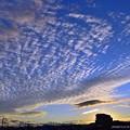 Photos: 朝陽(201129)