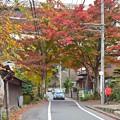 晩秋の小仏街道