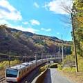 Photos: 晩秋の裏高尾