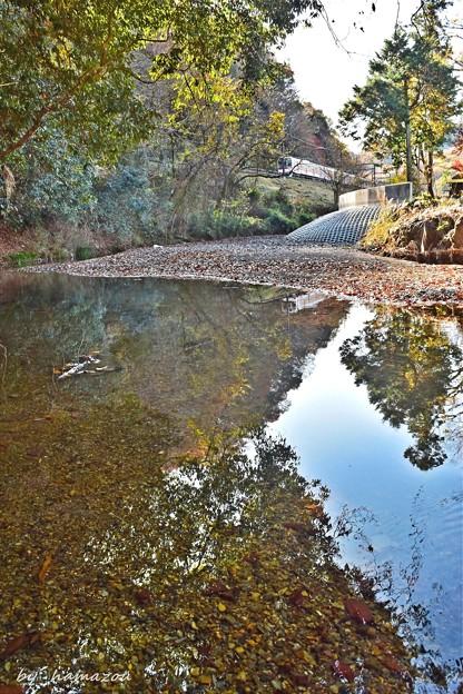 川面に映る残秋
