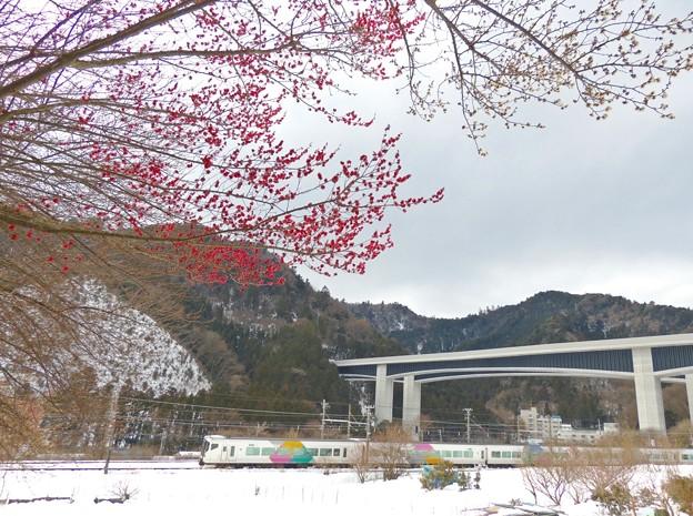 裏高尾雪景色