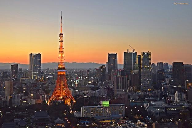 Photos: 黄昏東京タワー