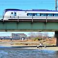Photos: 休日の河川敷