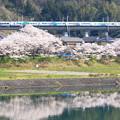 Photos: E257系「特急あずさ」@藤野~上野原