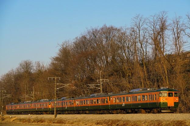 写真: 朝日を浴びオレンジ色が深まる115系湘南色