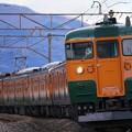 写真: 上越線738M 115系湘南色@ヤギシブカーブ