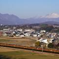 写真: 浅間山に見守られ115系湘南色が走る!