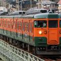 写真: 祖母島の鉄橋を駆ける115系湘南色
