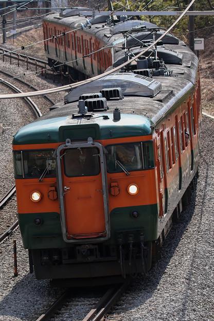 写真: 上越のS字カーブをゆく115系湘南色