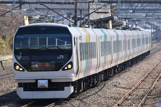 E257系団体列車@鳥沢~猿橋