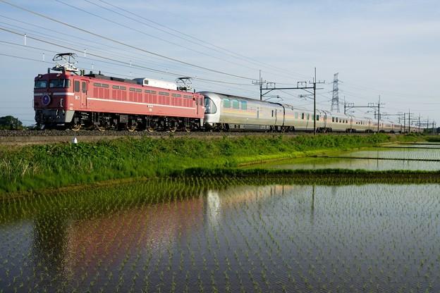 Photos: 9011レ EF81-81牽引カシオペア紀行@黒小屋踏切