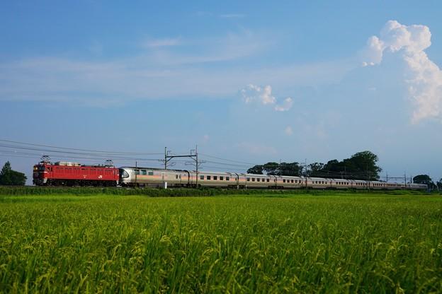 盛夏のヒガハスを往くカシオペア紀行 EF81-139+E26系