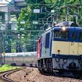 Photos: EF64-1051+EF81-95重連 ゆったり東日本周遊カシオペア紀行@越後湯沢~石打