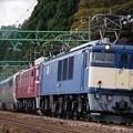 EF64-1051+EF81-80重連 東日本周遊カシオペア紀行@石打~大沢