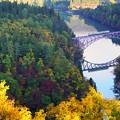 紅葉の只見川第一橋梁 キハ40系水鏡1