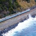 Photos: 8000系@伊豆稲取~今井浜海岸