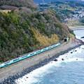 Photos: 251系スーパービュー踊り子@伊豆稲取~今井浜海岸