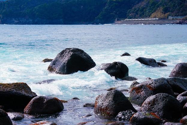 185系特急踊り子@伊豆稲取~今井浜海岸3