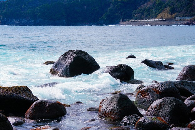 Photos: 185系特急踊り子@伊豆稲取~今井浜海岸3