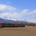 Photos: 浅間山をバックに走る115系@御代田~平原