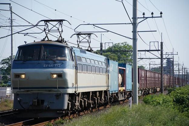 4093レ EF66-117+コキ@ヒガハス