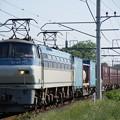 Photos: 4093レ EF66-117+コキ@ヒガハス