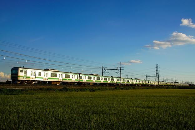 Photos: E231系ちょいギラリ@ワシクリ黒小屋踏切