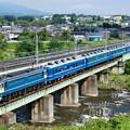 Photos: PトップEF65-501牽引ELぐんまよこかわ@安中鉄橋