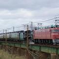 回9821レ EF81-97+C57180+12系7B SL日本海美食旅送り込み回送@阿賀野川橋梁1