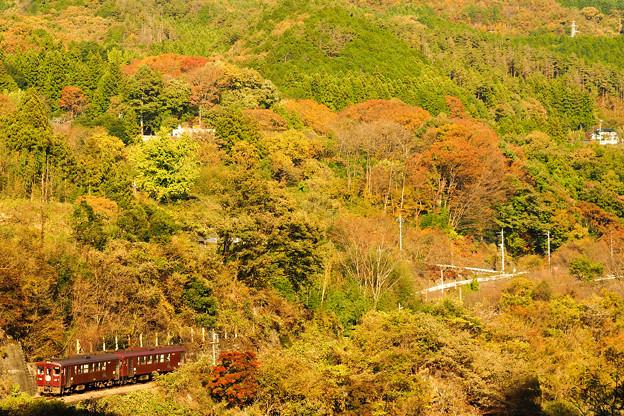 紅葉のわたらせ渓谷鉄道@神戸~小中