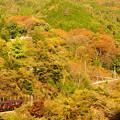 Photos: 紅葉のわたらせ渓谷鉄道@神戸~小中