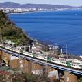 Photos: 185系踊り子@石橋鉄橋