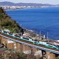Photos: 251系スーパービュー踊り子@石橋鉄橋