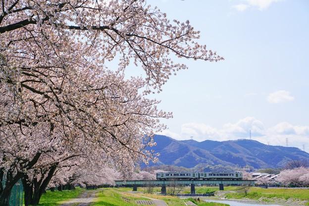 こだま千本桜とキハ110系その1