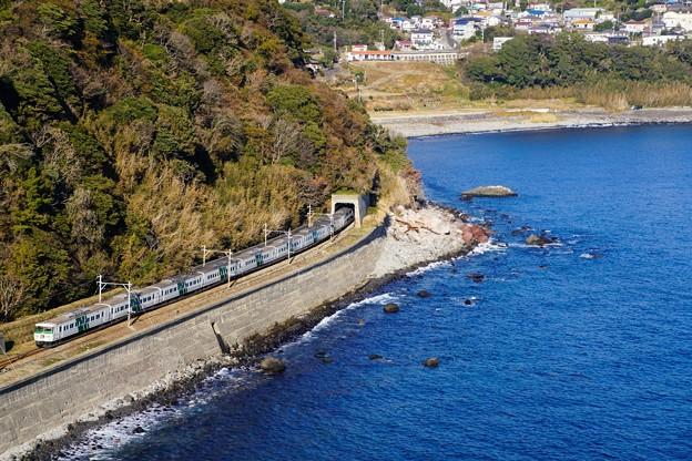 185系踊り子13号@稲取俯瞰トンネル飛び出し