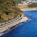 Photos: 185系踊り子13号@稲取俯瞰トンネル飛び出し
