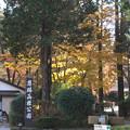 恩賜公園は関所の隣